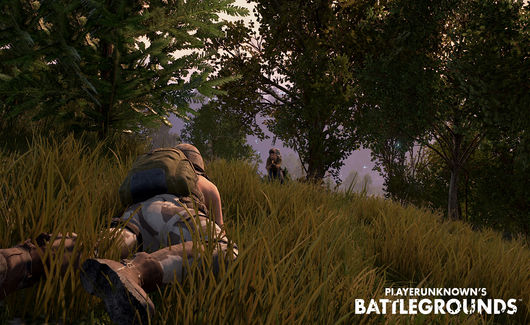 Playerunknown S Battlegrounds For Xbox Controls Revealed: PlayerUnknown's Battlegrounds Has An Interesting Xbox One